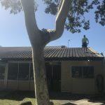 metal roofing Bonogin 2018
